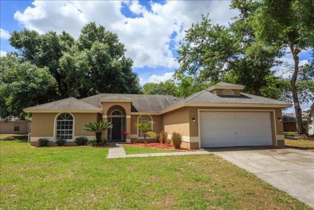 298 Hidden View Drive, Groveland, FL 34736 (MLS #O5778557) :: RealTeam Realty