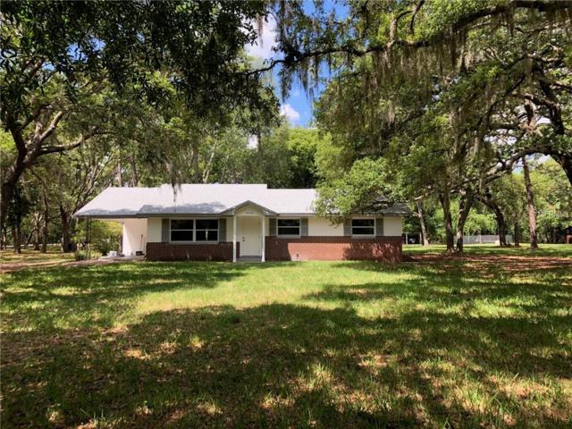 5450 Avalon Road, Winter Garden, FL 34787 (MLS #O5778653) :: Your Florida House Team