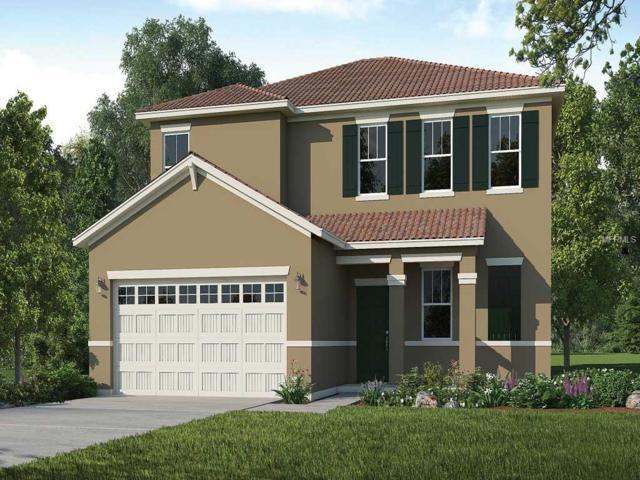 7041 Oakwood Street, Davenport, FL 33837 (MLS #O5778748) :: NewHomePrograms.com LLC