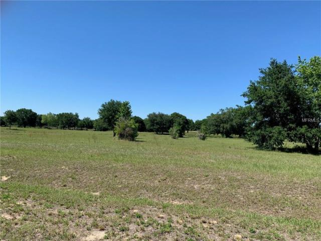 Groves Drive, Groveland, FL 34736 (MLS #O5778903) :: Team Bohannon Keller Williams, Tampa Properties