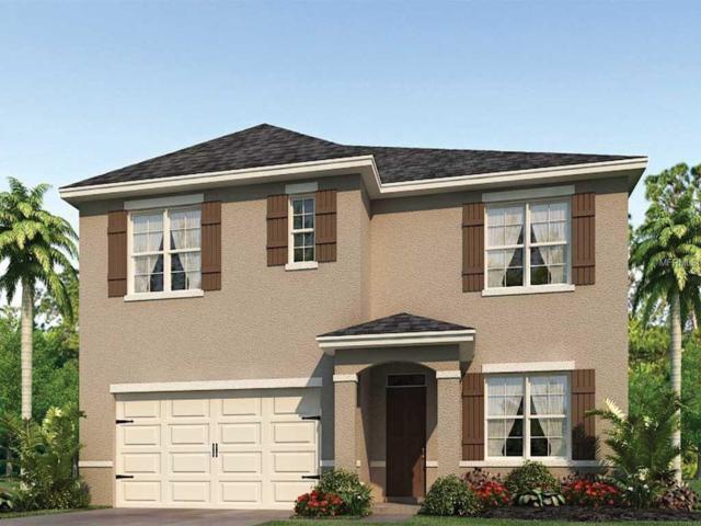2448 White Poppy Drive, Kissimmee, FL 34747 (MLS #O5779027) :: Bustamante Real Estate