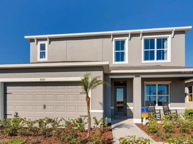 2488 White Poppy Drive, Kissimmee, FL 34747 (MLS #O5779075) :: Bustamante Real Estate