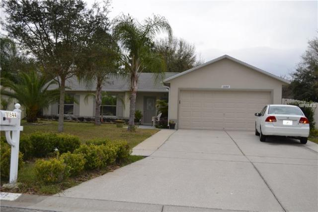 11844 Windflower Court, Clermont, FL 34711 (MLS #O5779289) :: Team Bohannon Keller Williams, Tampa Properties