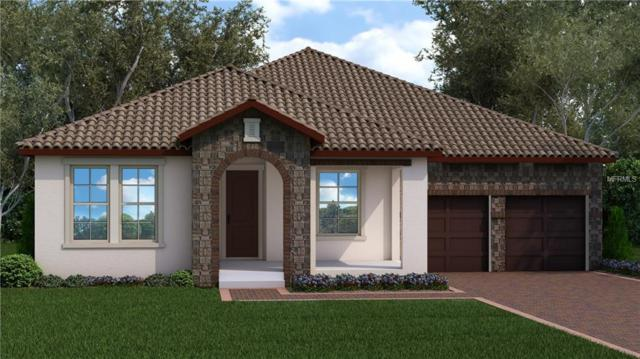 13609 Gorgona Isle Drive, Windermere, FL 34786 (MLS #O5779321) :: Bustamante Real Estate