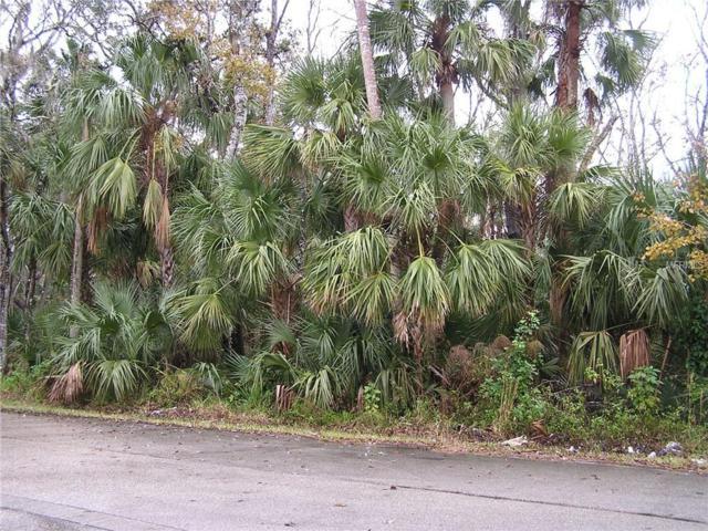 616 S Myrtle Avenue, New Smyrna Beach, FL 32168 (MLS #O5779361) :: The Duncan Duo Team