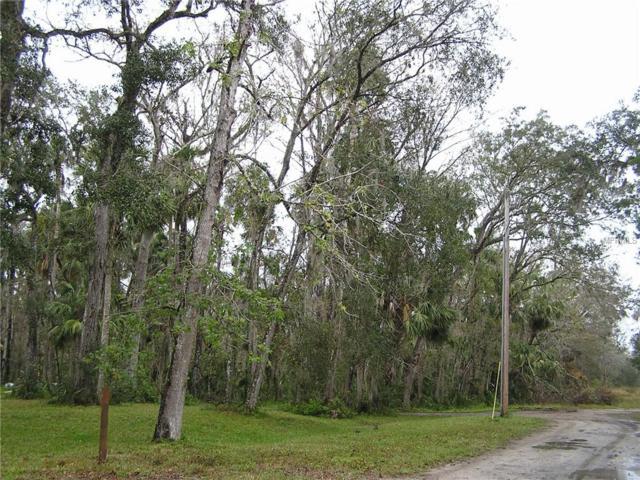 Burma Road, New Smyrna, FL 32168 (MLS #O5779372) :: Team Bohannon Keller Williams, Tampa Properties