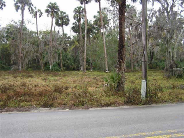 Suitor Street, New Smyrna Beach, FL 32168 (MLS #O5779670) :: The Duncan Duo Team