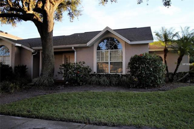 Windsor Oak Windsor Oak Court, Kissimmee, FL 34744 (MLS #O5779676) :: The Duncan Duo Team