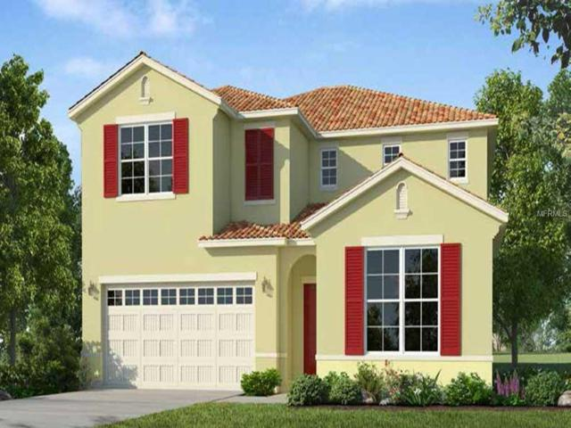 7036 Oakwood Street, Davenport, FL 33837 (MLS #O5779722) :: Griffin Group