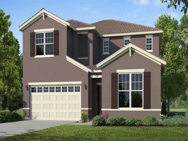 6067 Broad Oak Drive, Davenport, FL 33837 (MLS #O5779752) :: NewHomePrograms.com LLC