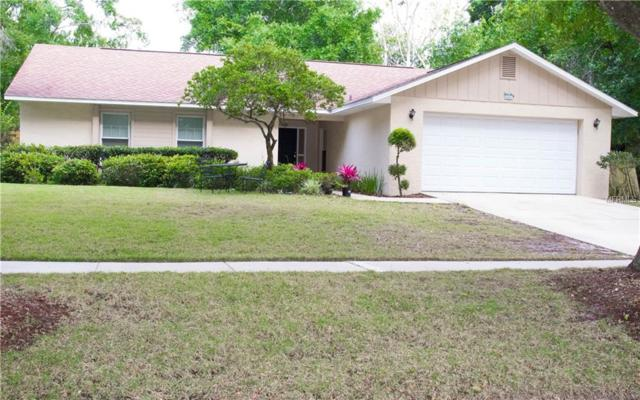 4031 White Birch Way, Orlando, FL 32817 (MLS #O5779769) :: The Figueroa Team