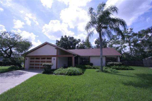 4110 Cypress Bayou Drive, Tampa, FL 33618 (MLS #O5779791) :: Delgado Home Team at Keller Williams