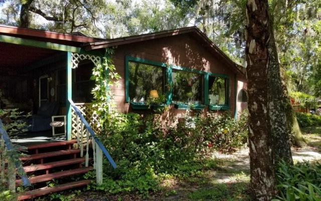 1185 Piney Woods Trail, Osteen, FL 32764 (MLS #O5779983) :: Team Bohannon Keller Williams, Tampa Properties