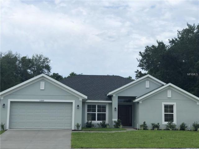 33849 Emerald Pond Loop, Leesburg, FL 34788 (MLS #O5780154) :: The Light Team