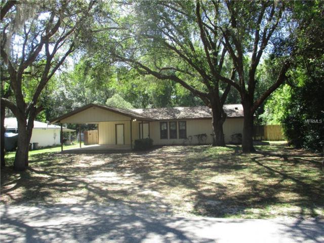 3652 E Delight Street, Hernando, FL 34442 (MLS #O5780358) :: Cartwright Realty