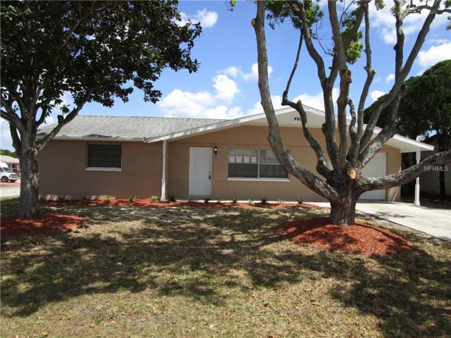 4904 Elmwood Street, New Port Richey, FL 34653 (MLS #O5780376) :: Lovitch Realty Group, LLC