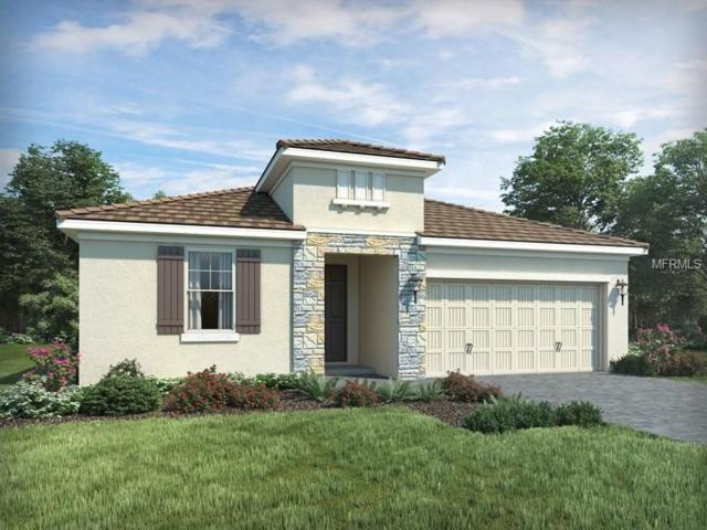 13803 American Prairie Place, Bradenton, FL 34211 (MLS #O5780448) :: Medway Realty