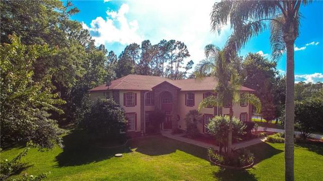 14138 Mastwood Way, Orlando, FL 32832 (MLS #O5780816) :: The Duncan Duo Team