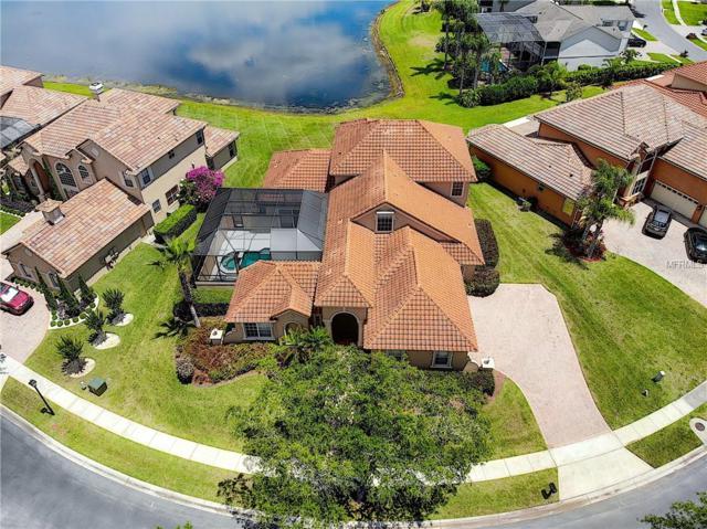 2615 Northampton Avenue, Orlando, FL 32828 (MLS #O5780972) :: RE/MAX Realtec Group