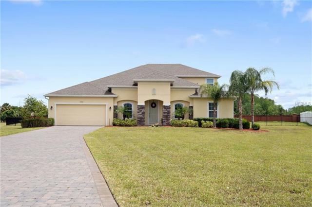 17400 Bella Nova Drive, Orlando, FL 32820 (MLS #O5781007) :: Team Bohannon Keller Williams, Tampa Properties