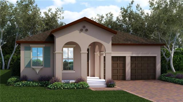 8249 Procida Isle Lane, Windermere, FL 34786 (MLS #O5781024) :: Bustamante Real Estate