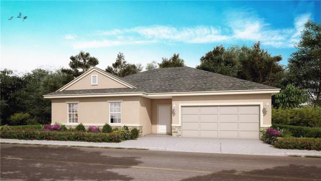 1424 Kissimmee Drive, Poinciana, FL 34759 (MLS #O5781280) :: RE/MAX Realtec Group