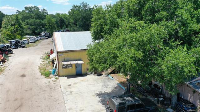 6100 Whitney Street, Mount Dora, FL 32757 (MLS #O5781317) :: Cartwright Realty