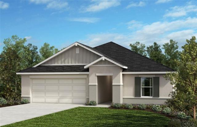 1680 Scarbrough Abby Place, Saint Cloud, FL 34771 (MLS #O5781604) :: Burwell Real Estate
