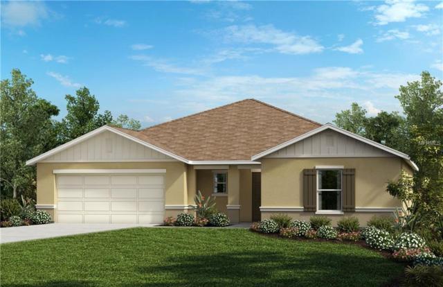 15829 Bradicks Court, Clermont, FL 34711 (MLS #O5781777) :: The Brenda Wade Team