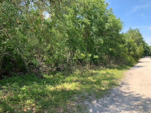 Old River Trail, Chuluota, FL 32766 (MLS #O5781890) :: The Duncan Duo Team
