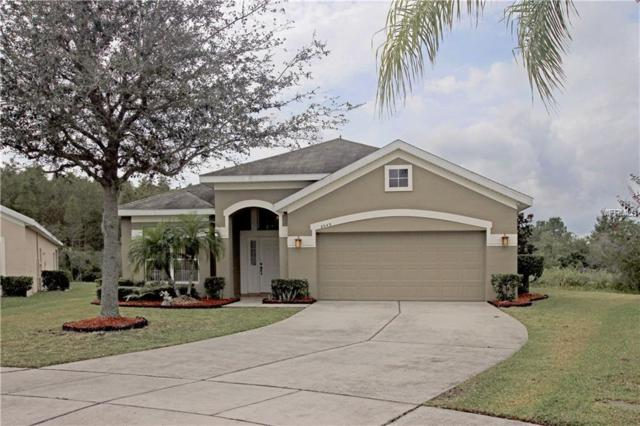 2043 Marsh Hawk Drive, Orlando, FL 32837 (MLS #O5782004) :: Team Bohannon Keller Williams, Tampa Properties
