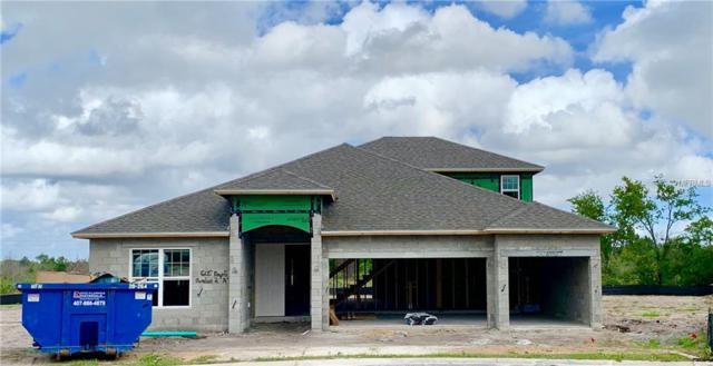 605 Napoli Way, Howey in the Hills, FL 34737 (MLS #O5782014) :: Team Bohannon Keller Williams, Tampa Properties