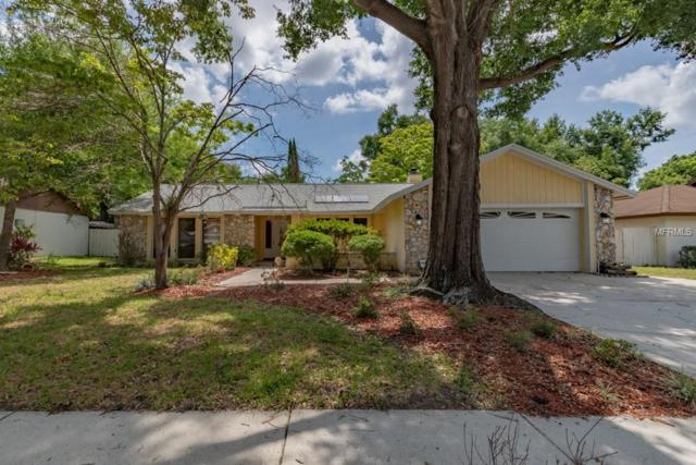 8151 Jozee Circle, Orlando, FL 32836 (MLS #O5782078) :: The Duncan Duo Team