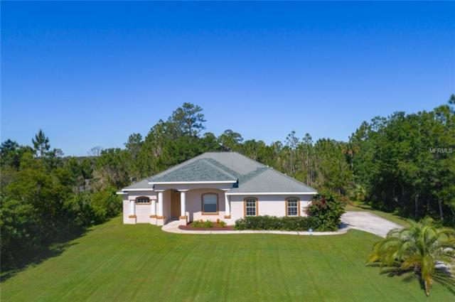 3243 Pheasant Trail, Mims, FL 32754 (MLS #O5782102) :: Cartwright Realty