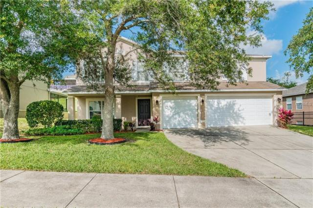 368 Sky Valley, Clermont, FL 34711 (MLS #O5782106) :: The Duncan Duo Team