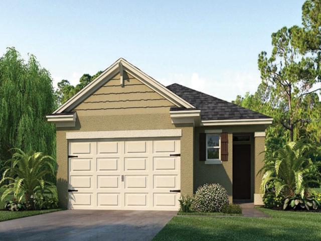 3198 Timber Hawk Circle, Ocoee, FL 34761 (MLS #O5782296) :: Team Bohannon Keller Williams, Tampa Properties