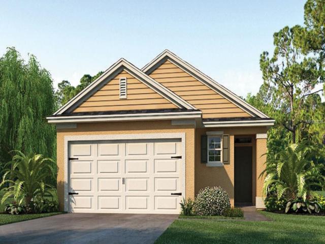 3174 Timber Hawk Circle, Ocoee, FL 34761 (MLS #O5782301) :: Team Bohannon Keller Williams, Tampa Properties
