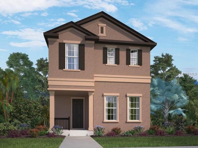 9948 Pallida Hickory Way, Winter Garden, FL 34787 (MLS #O5782400) :: Bustamante Real Estate