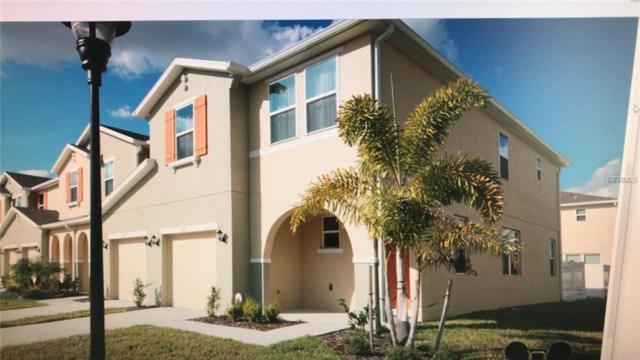 5117 Killarney Way, Kissimmee, FL 34746 (MLS #O5782418) :: Griffin Group