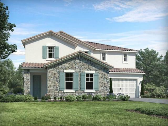 13717 American Prairie Place, Bradenton, FL 34211 (MLS #O5782630) :: Medway Realty