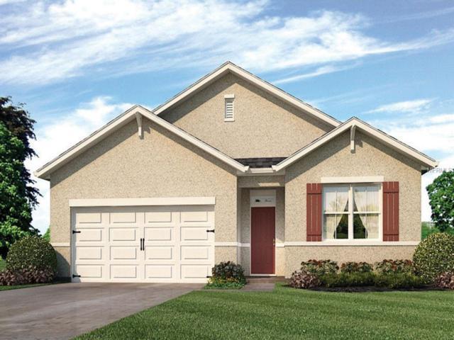996 Summer Glen Drive, Winter Haven, FL 33880 (MLS #O5782815) :: Team Bohannon Keller Williams, Tampa Properties