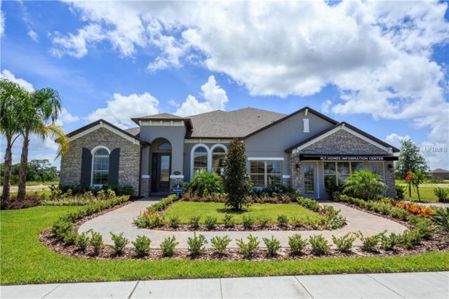 17675 Sailfin Drive, Orlando, FL 32820 (MLS #O5782970) :: The Duncan Duo Team