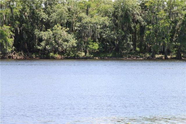 1215 Tall Pines Drive, Osteen, FL 32764 (MLS #O5783353) :: The Duncan Duo Team