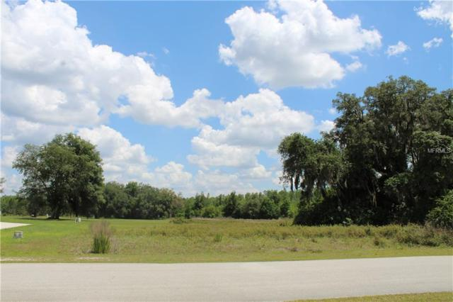 Greengrove Blvd ,Lot #107 Boulevard #107, Clermont, FL 34711 (MLS #O5783610) :: The Duncan Duo Team