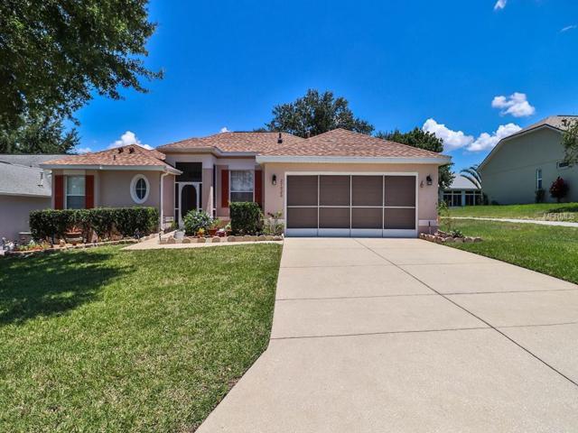27020 Nature View Street, Leesburg, FL 34748 (MLS #O5783729) :: Team Bohannon Keller Williams, Tampa Properties