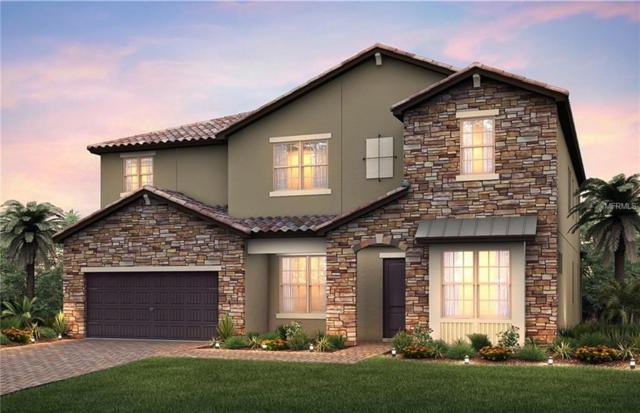 10906 Savona Way, Orlando, FL 32827 (MLS #O5784067) :: Team Bohannon Keller Williams, Tampa Properties