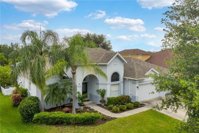 4230 Flora Vista Drive, Orlando, FL 32837 (MLS #O5784177) :: Bustamante Real Estate
