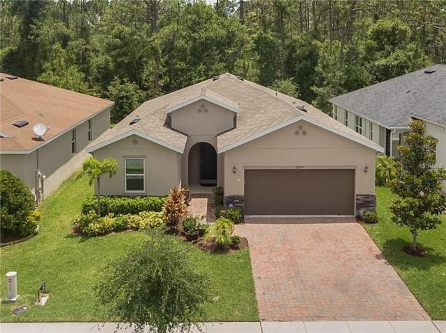 2307 Avellino Avenue, Saint Cloud, FL 34771 (MLS #O5784215) :: Griffin Group