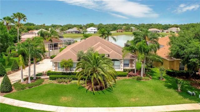 6554 Franconia Drive, Belle Isle, FL 32812 (MLS #O5784252) :: Team Bohannon Keller Williams, Tampa Properties