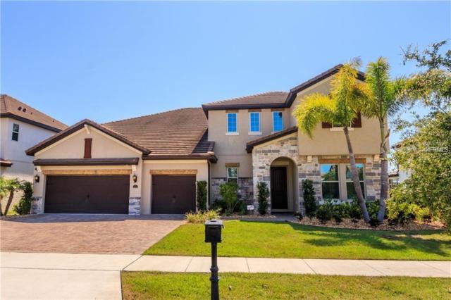 8321 Chilton Drive, Orlando, FL 32836 (MLS #O5784575) :: Charles Rutenberg Realty